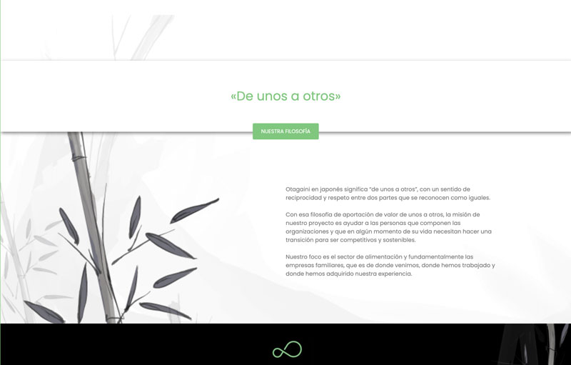 Diseño web otagaini.com